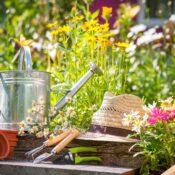 Hobi Bahçeleri Ve Süs Bitkileri Toprakları